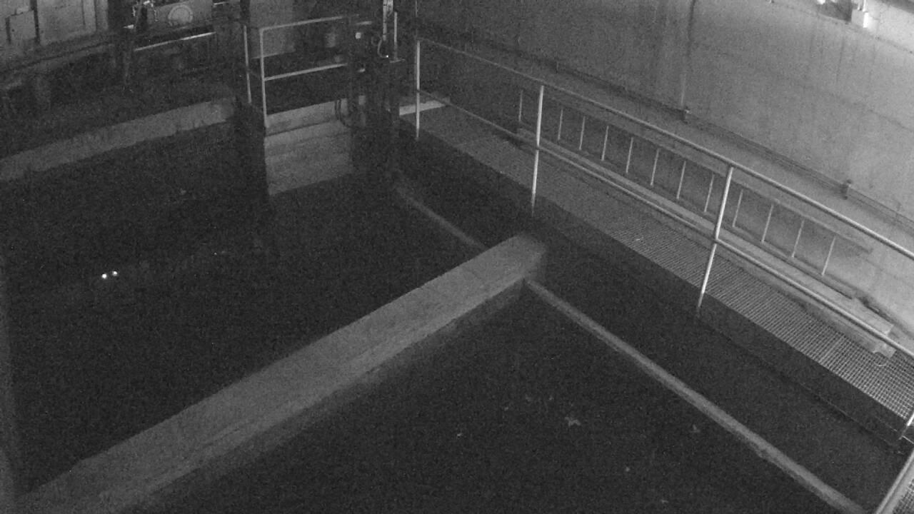 Webcam in Monasterolo Di Savig